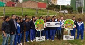 Cajica ambiental El Hablador